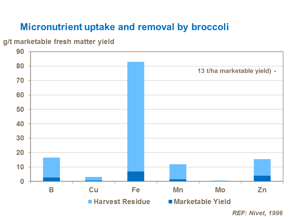 Micronutrient uptake and removal by broccoli