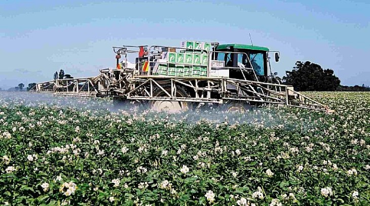 Foliar Spraying Potatoes