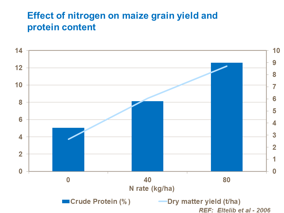 Effect of nitrogen rate on forage maize yield