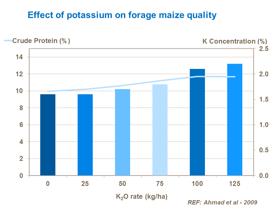 Effect of potassium on forage maize quality